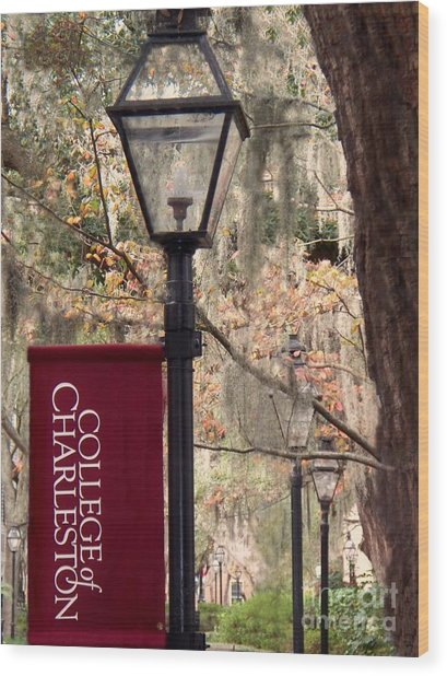 Fall At The College Of Charleston Wood Print by Melanie Snipes