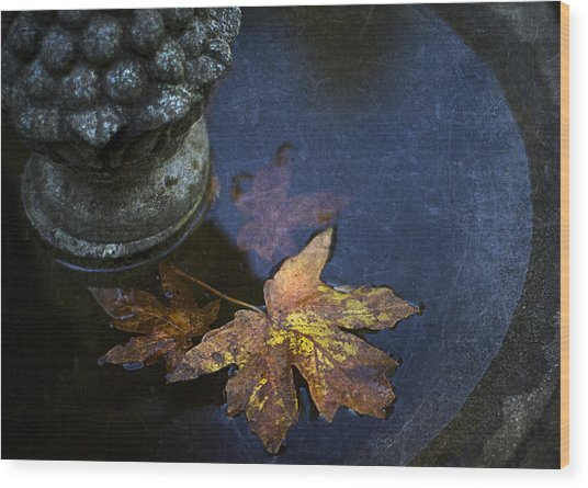Fall At The Fountain Wood Print