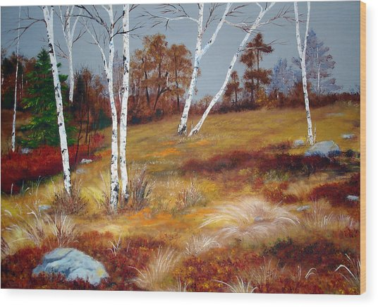 Fall Birch Trees And Blueberries Wood Print by Laura Tasheiko
