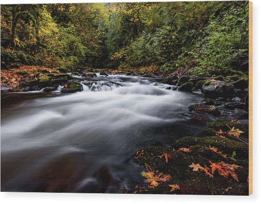 Fall Color At Cedar Creek Wood Print