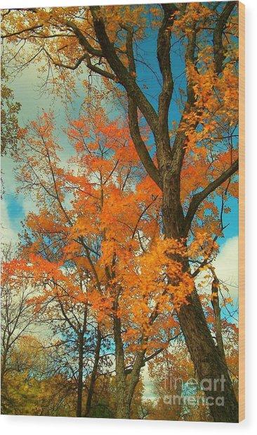 Fall Colors 2 Wood Print by Marjorie Imbeau