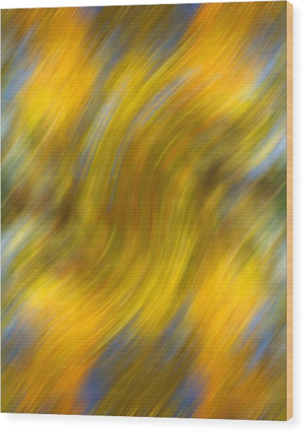 Fall Colors Abstract Wood Print by Bob Coates