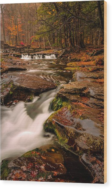 Fall Colors Around The Stream Wood Print