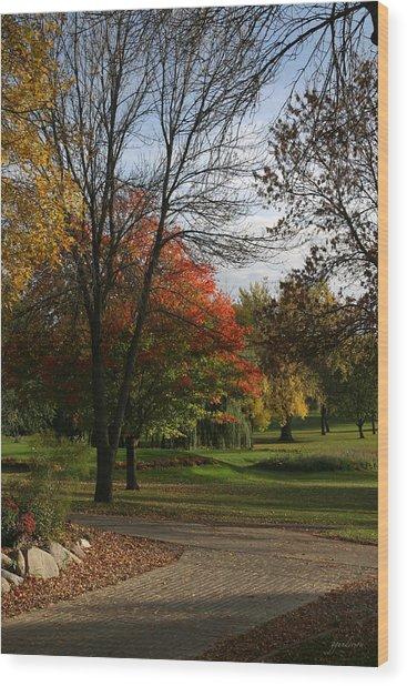 Fall Colors At Brooks Wood Print