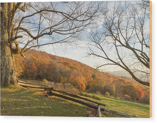 Fall Colors At The Moses Cone Estate Wood Print