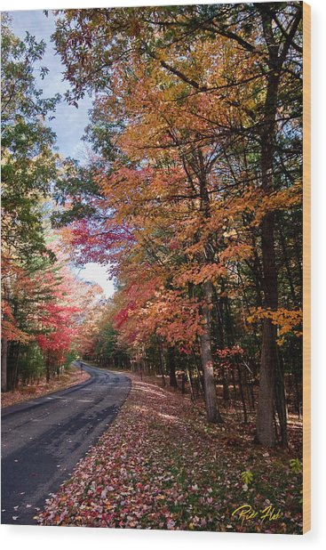 Fall Colors Backroad Wood Print