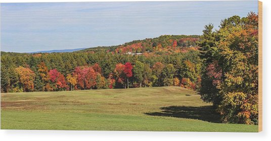 Fall Colors In Easthampton Wood Print