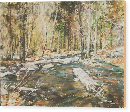 Fall Colors Wood Print by James Roybal