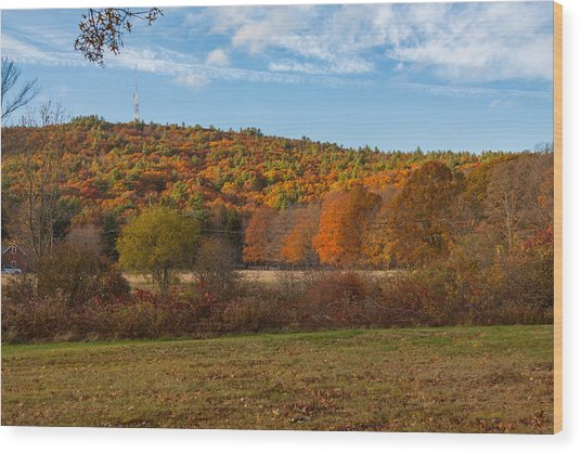 Fall Colors On Great Blue Hill Wood Print