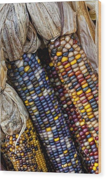 Fall Corn Wood Print