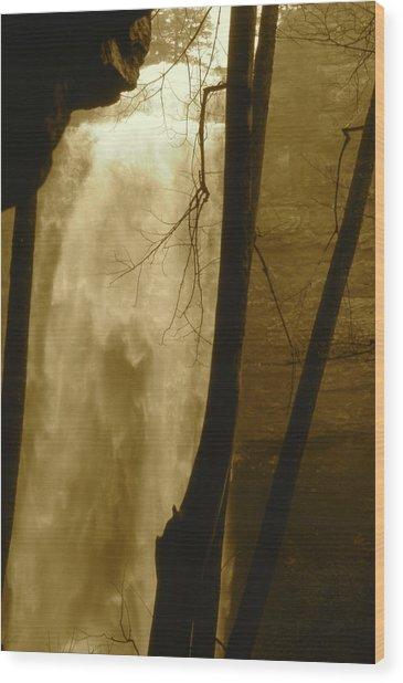Fall Creel Falls In Sepia Wood Print