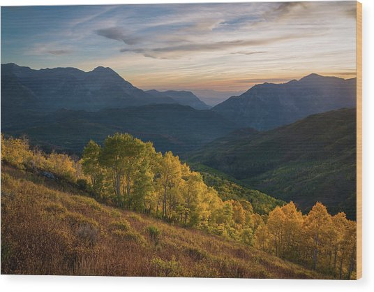 Fall Evening In American Fork Canyon Wood Print