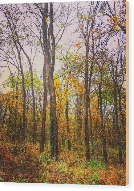 Fall Farewell Wood Print