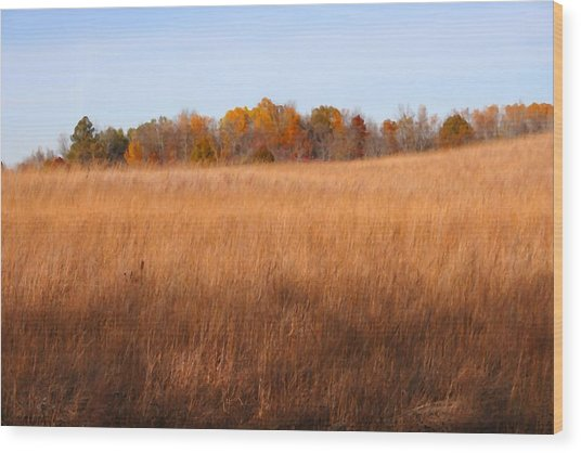 Fall Field Wood Print