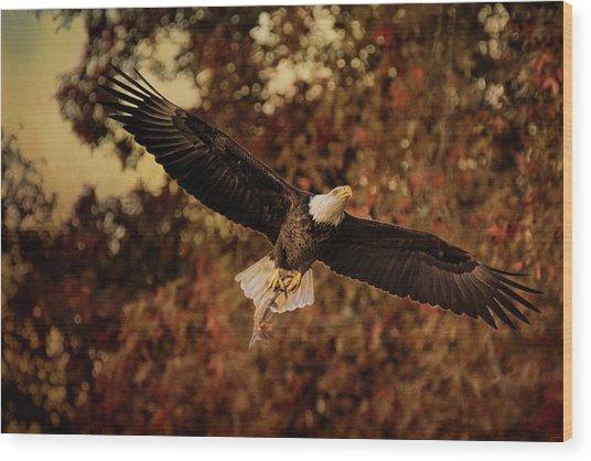 Fall Fishing 2 Bald Eagle Art Wood Print