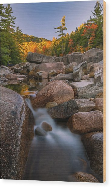 Fall Foliage In New Hampshire Swift River Wood Print