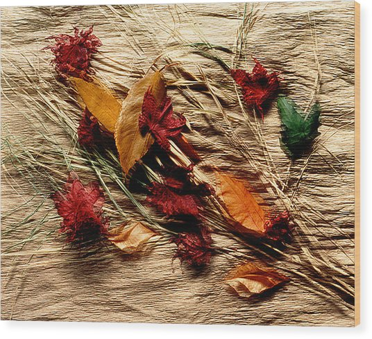 Fall Foliage Still Life Wood Print