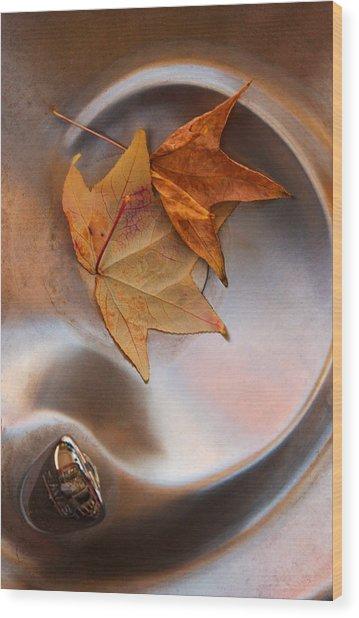 Fall Fountain Wood Print