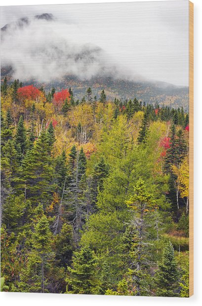 Fall In Baxter State Park Maine Wood Print by Brendan Reals