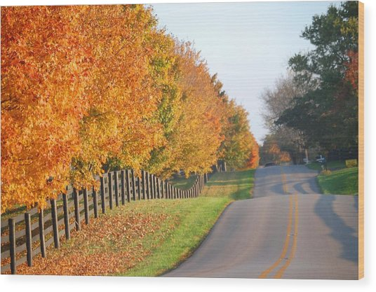 Fall In Horse Farm Country Wood Print