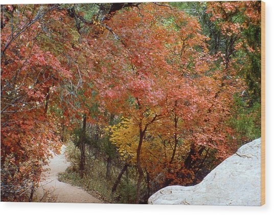 Fall In Mammoth Wood Print