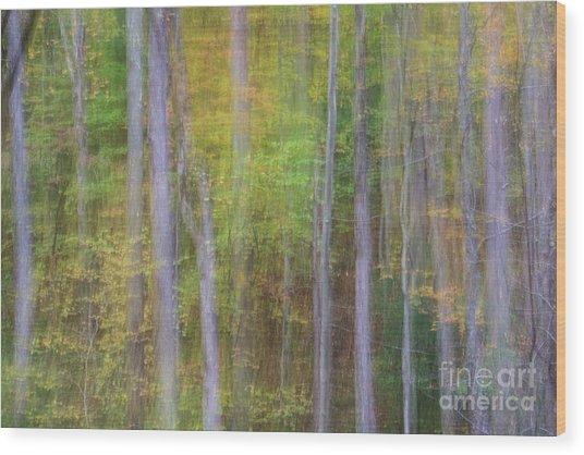Fall In Motion Wood Print by Jennifer Ludlum