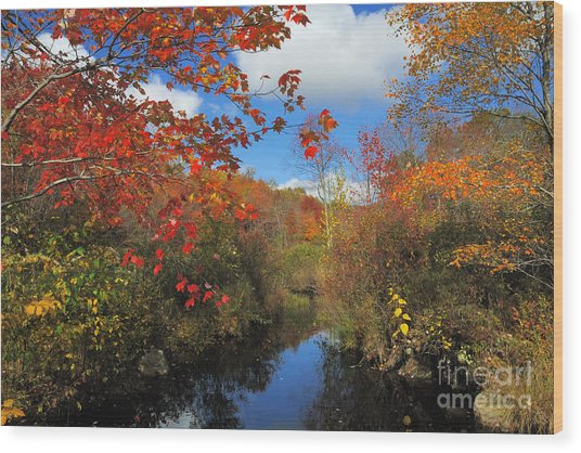 Fall In New England 2 Wood Print