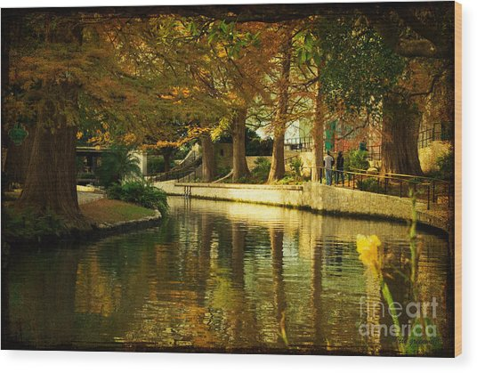 Fall In San Antonio Wood Print