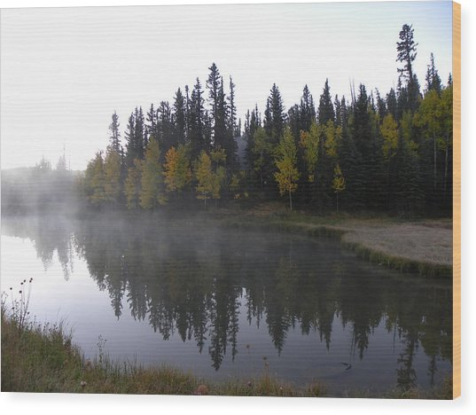 Kiddie Pond Fall Colors Divide Co Wood Print
