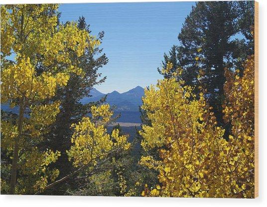 Fall In The Rockies Wood Print