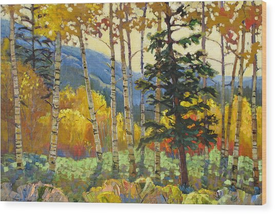 Fall In The San Juans Wood Print by Susan McCullough