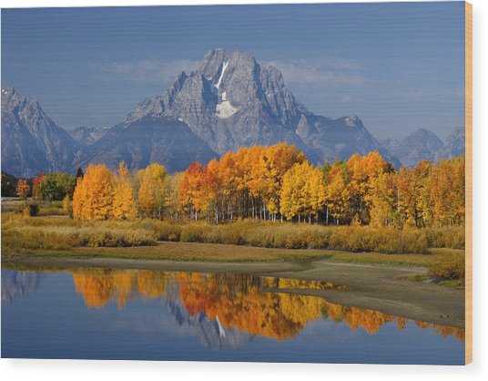 Fall In The Tetons Wood Print