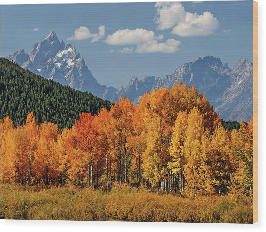 Wood Print featuring the photograph Fall In The Tetons by Wesley Aston