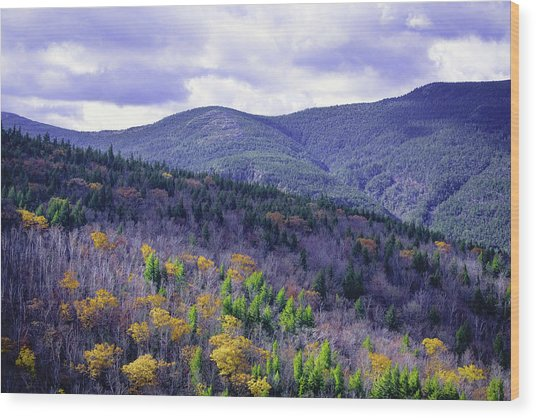 Fall In The White Mountains Wood Print