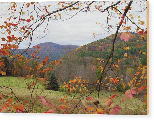 Fall In Vermont Wood Print