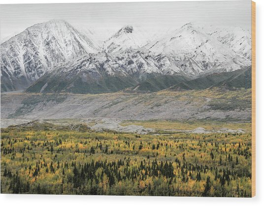 Fall In Wrangell - St. Elias Wood Print