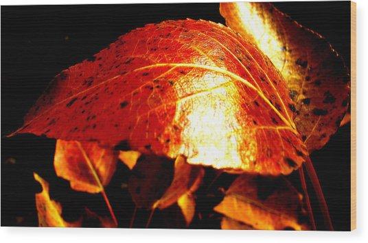 Fall Leafs Wood Print by Neshka Muchalska