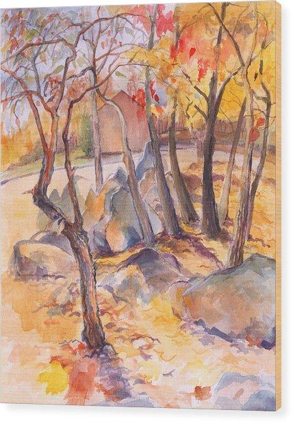 Fall Light 2 Wood Print by Nancy Watson