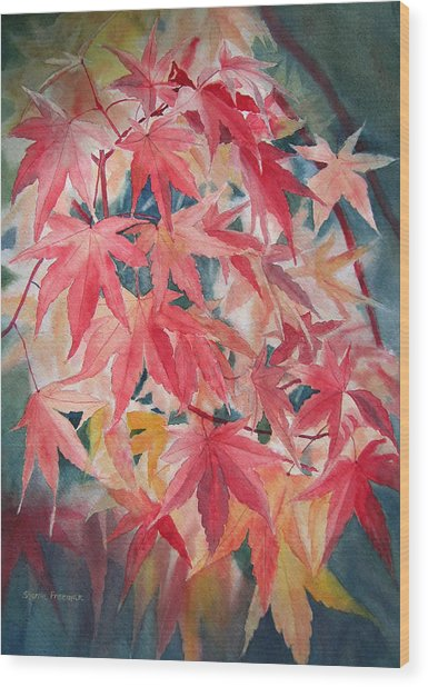 Fall Maple Leaves Wood Print by Sharon Freeman