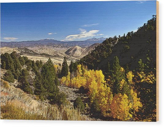 Fall Monitor Pass Wood Print by Larry Darnell