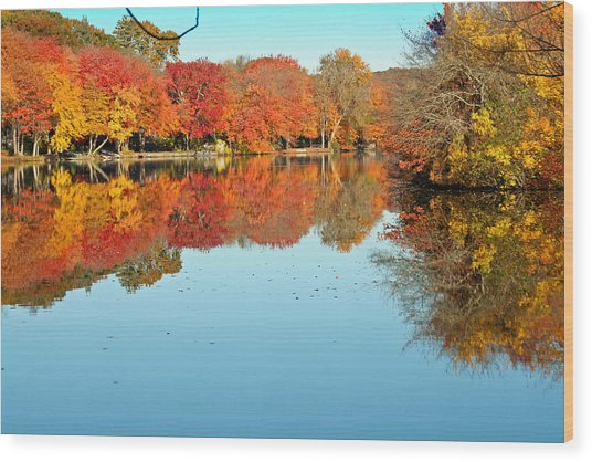 Fall Morning In East Lyme 1 Wood Print by Gerald Mitchell