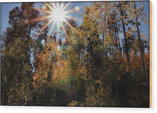 Fall Mt. Lemmon 2017 Wood Print