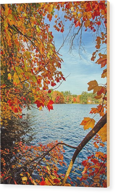 Fall On Lake Opechee Wood Print