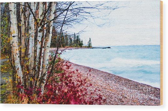 Fall On Lake Superior Wood Print