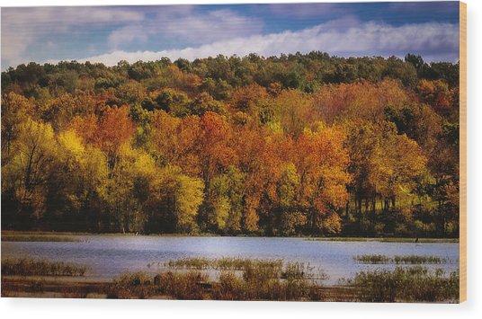 Fall On Springfield Lake Wood Print