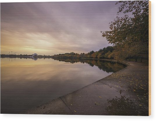 Fall On The Tidal Basin Wood Print