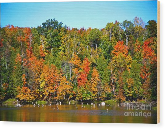 Fall On The Water Wood Print by Robert Pearson