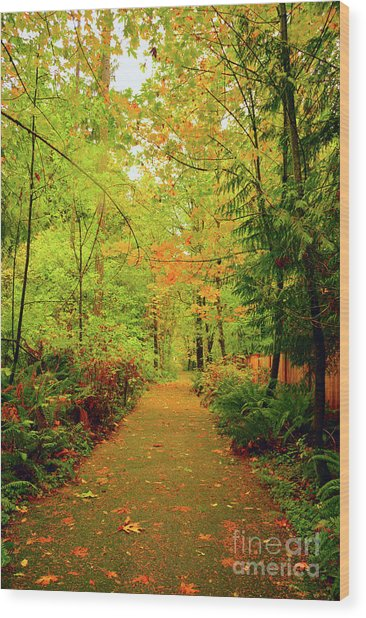 Fall Path Too Wood Print