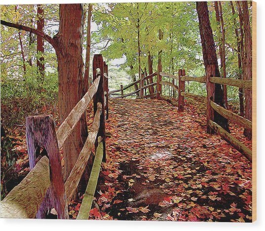 Fall Pathway Wood Print