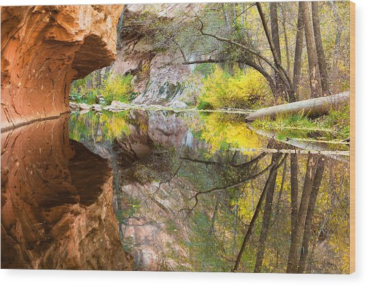 Fall Reflections Wood Print by Carl Amoth